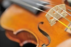 Vioolles bij Rhythm & Music
